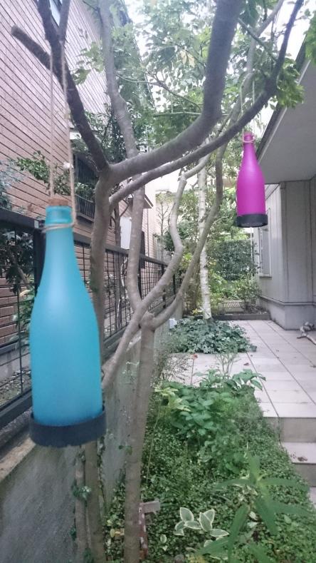 自宅の庭にボトルライトを設置してみました。日当たりが悪いせいか中々光らない